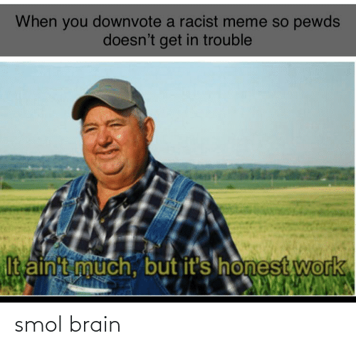 Racist Meme: When you downvote a racist meme so pewds  doesn't get in trouble  It ainit much, but it's honest work smol brain