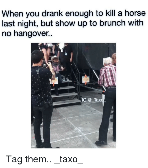 No Hangover: When you drank enough to kill a horse  last night, but show up to brunch with  no hangover..  IG_Tax Tag them.. _taxo_