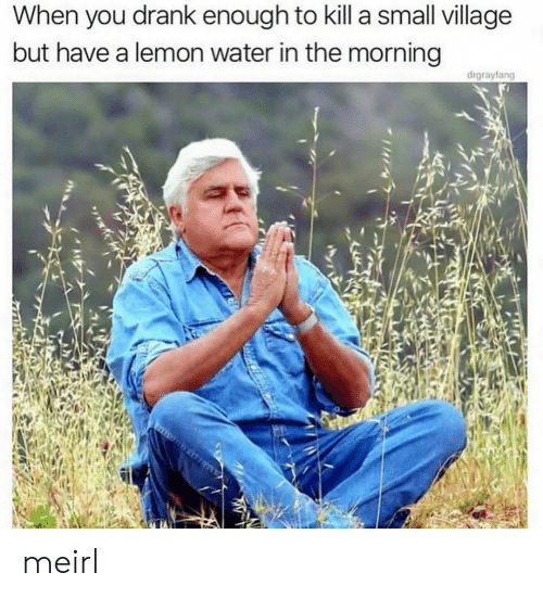 lemon: When you drank enough to kill a small village  but have a lemon water in the morning  drgrayfang meirl