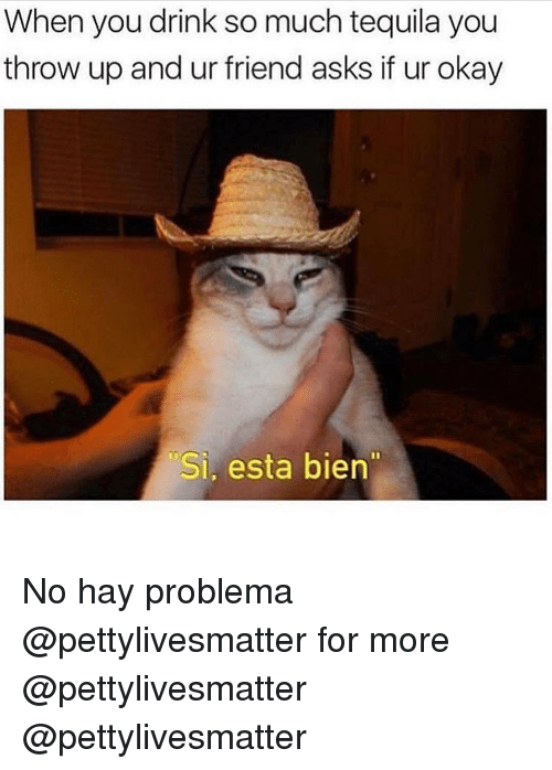 Memes, Okay, and Tequila: When you drink so much tequila you  throw up and ur friend asks if ur okay  Si, esta bien No hay problema @pettylivesmatter for more @pettylivesmatter @pettylivesmatter