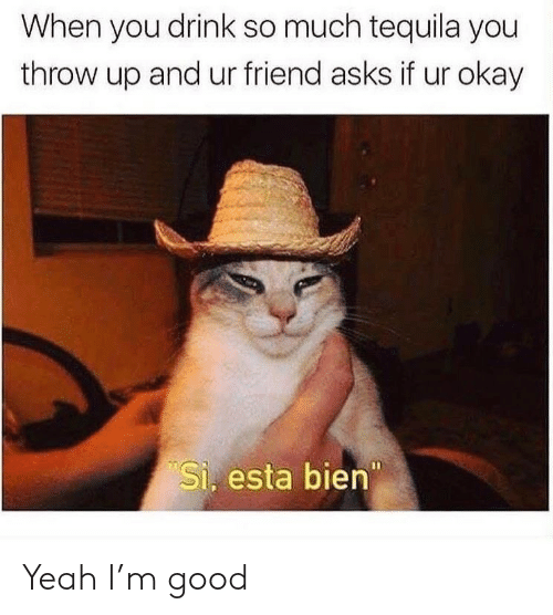 Tequila: When you drink so much tequila you  throw up and ur friend asks if ur okay  Si. esta bien Yeah I'm good