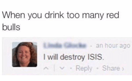 I Will Destroy Isis: When you drink too many red  bulls  an hour ago  I will destroy ISIS  Reply Share