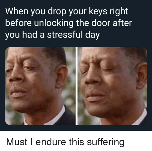 endure: When you drop your keys right  before unlocking the door after  you had a stressful day Must I endure this suffering