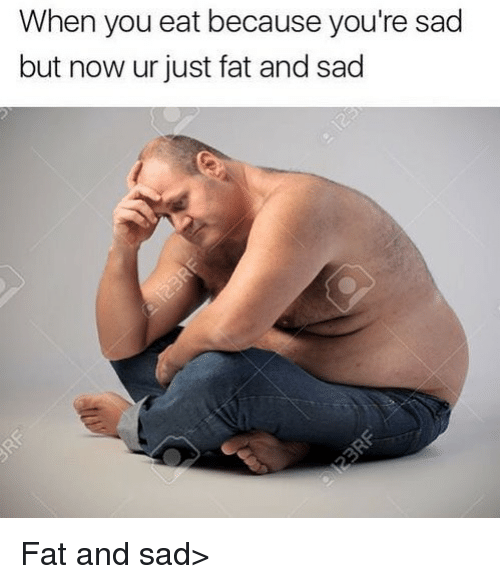 Dank Memes, Fat, and Sad: When you eat because you're sad  but now ur just fat and sad Fat and sad>