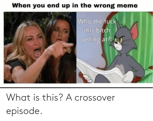 Wrong Meme: When you end up in the wrong meme  Who the fuck  this bitch  yelling at? What is this? A crossover episode.