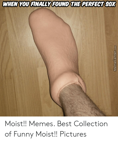 Moist Pictures: WHEN YOU FANALLY FOUND THE PERFECT SOX Moist!! Memes. Best Collection of Funny Moist!! Pictures