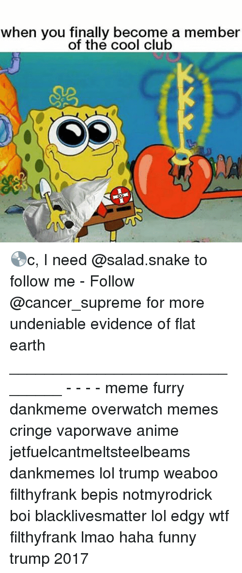 Anime, Black Lives Matter, and Club: when you finally become a member  of the cool club 💿c, I need @salad.snake to follow me - Follow @cancer_supreme for more undeniable evidence of flat earth _______________________________ - - - - meme furry dankmeme overwatch memes cringe vaporwave anime jetfuelcantmeltsteelbeams dankmemes lol trump weaboo filthyfrank bepis notmyrodrick boi blacklivesmatter lol edgy wtf filthyfrank lmao haha funny trump 2017