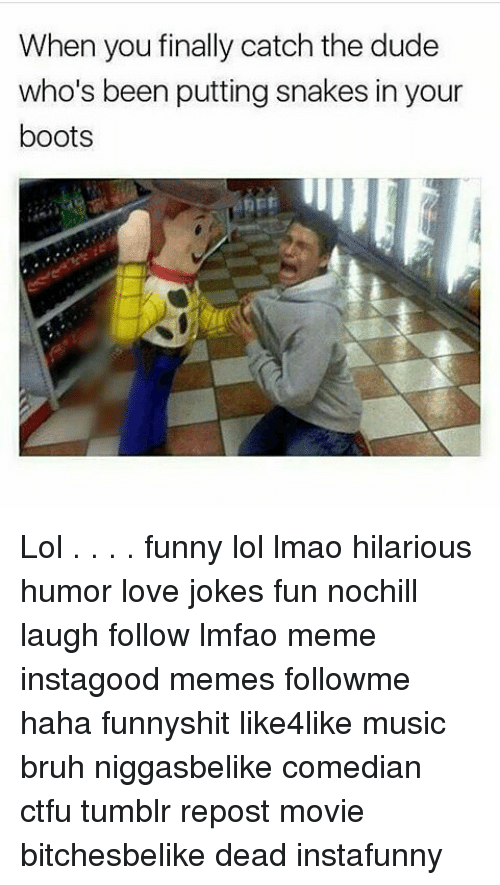 Funny Lols: When you finally catch the dude  who's been putting snakes in your  boots Lol . . . . funny lol lmao hilarious humor love jokes fun nochill laugh follow lmfao meme instagood memes followme haha funnyshit like4like music bruh niggasbelike comedian ctfu tumblr repost movie bitchesbelike dead instafunny