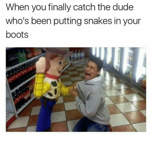 Dude, Memes, and Boots: When you finally catch the dude  who's been putting snakes in your  boots