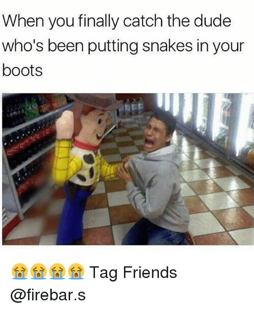 Dude, Friends, and Memes: When you finally catch the dude  who's been putting snakes in your  boots 😭😭😭😭 Tag Friends @firebar.s