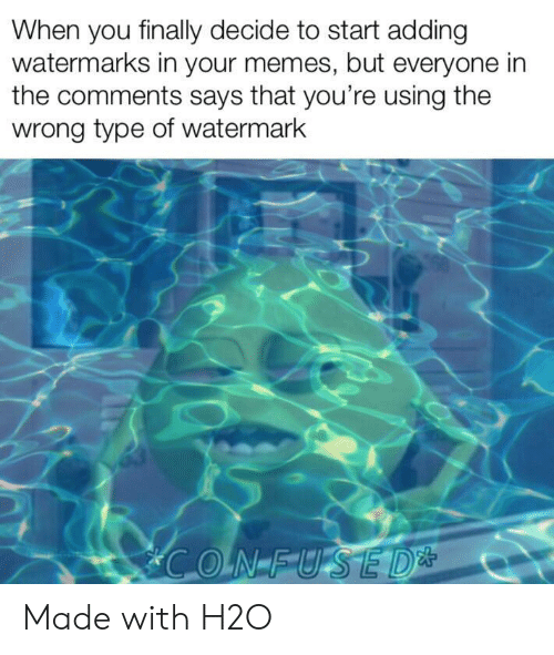 watermark: When you finally decide to start adding  watermarks in your memes, but everyone in  the comments says that you're using the  wrong type of watermark Made with H2O