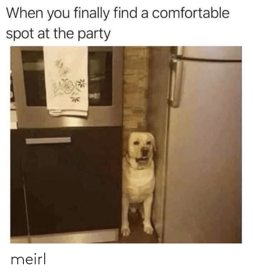 the party: When you finally find a comfortable  spot at the party meirl
