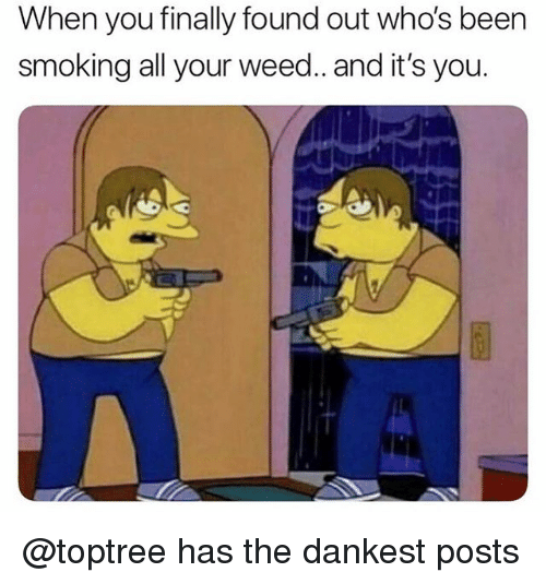 Dankest: When you finally found out who's been  smoking all your weed.. and it's you. @toptree has the dankest posts
