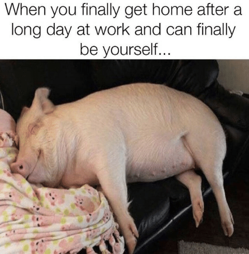 be yourself: When you finally get home after a  long day at work and can finally  be yourself...