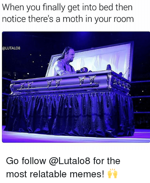 Memes, Relatable, and 🤖: When you finally get into bed then  notice there's a moth in your room  @LUTALO8 Go follow @Lutalo8 for the most relatable memes! 🙌