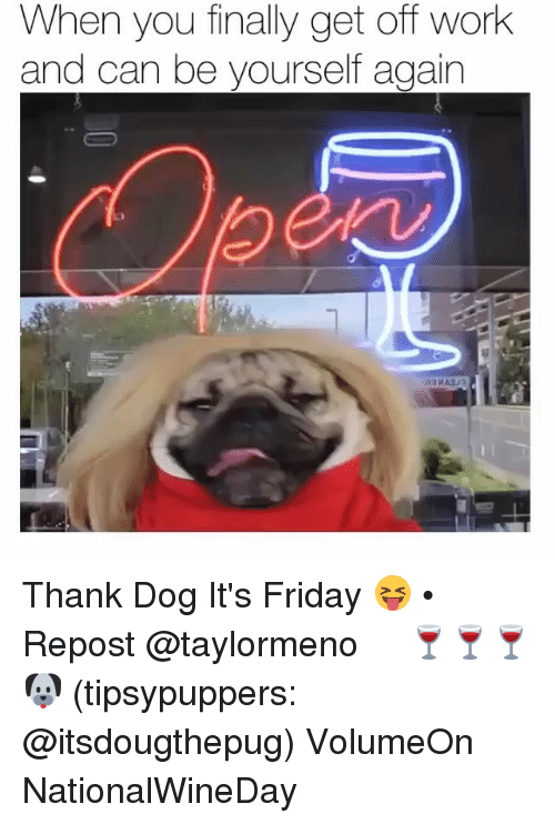 Friday, It's Friday, and Memes: When you finally get off work  and can be yourself again Thank Dog It's Friday 😝 • Repost @taylormeno ・・・ 🍷🍷🍷🐶 (tipsypuppers: @itsdougthepug) VolumeOn NationalWineDay