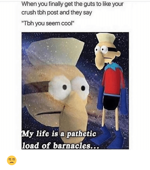 "Crush, Funny, and Life: When you finally get the guts to like your  crush tbh post and they say  ""Tbh you seem cool""  My life is a pathetic  load of barnacles... 😒"