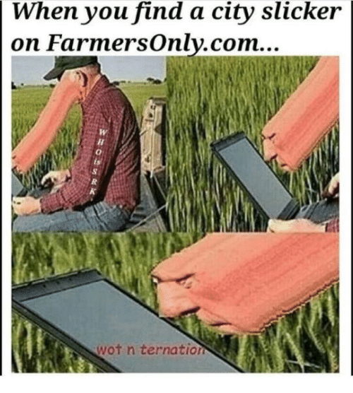 City Slickers: When you find a city slicker  on Farmers only.com...  wot n ternation