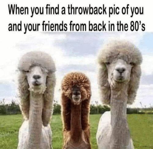 80s: When you find a throwback pic of you  and your friends from back in the 80's