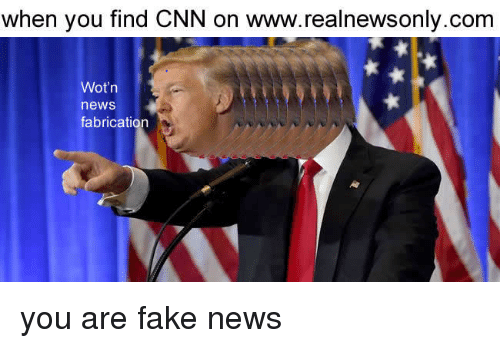 You Are Fake News: when you find CNN on www.realnewsonly.com  Wot'n  news  fabrication <p>you are fake news</p>