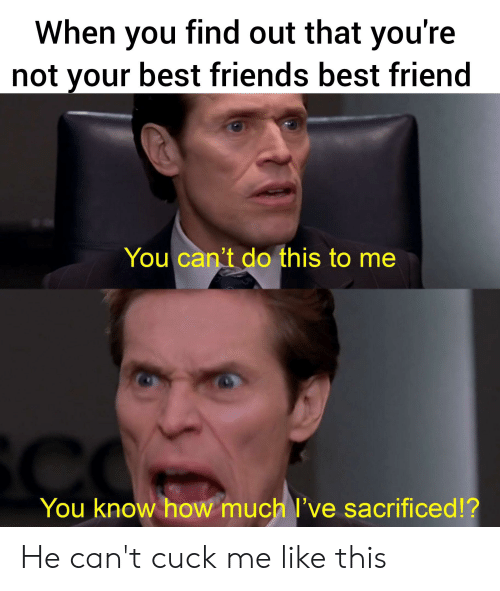 Friends Best Friend: When you find out that you're  not your best friends best friend  You can't do this to me  You know how much l've sacrificed!? He can't cuck me like this