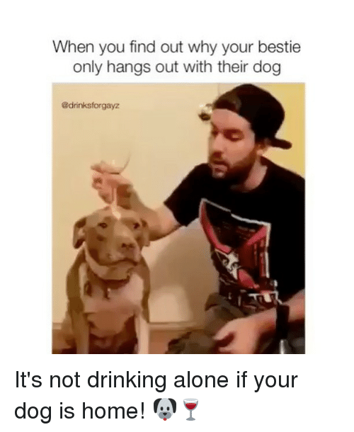 Drinking Alone: When you find out why your bestie  only hangs out with their dog  @drinksforgayz It's not drinking alone if your dog is home! 🐶🍷