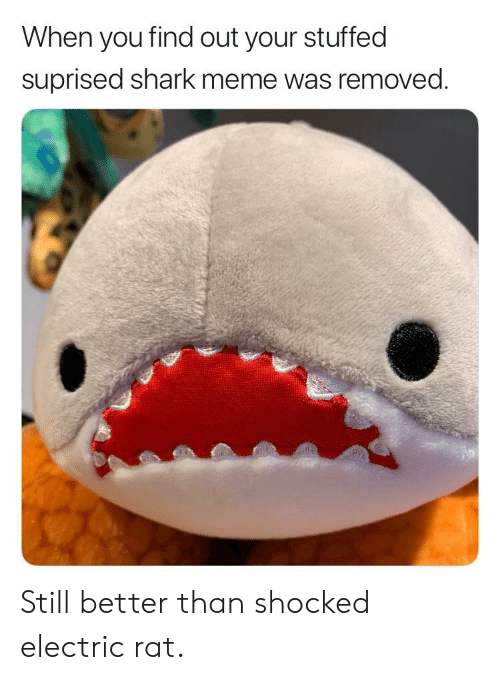 shark meme: When you find out your stuffed  suprised shark meme was removed Still better than shocked electric rat.