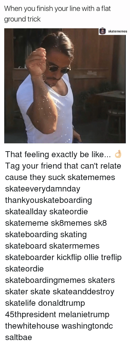 Saltbae: When you finish your line with a flat  ground trick  skatememes That feeling exactly be like... 👌🏼 Tag your friend that can't relate cause they suck skatememes skateeverydamnday thankyouskateboarding skateallday skateordie skatememe sk8memes sk8 skateboarding skating skateboard skatermemes skateboarder kickflip ollie treflip skateordie skateboardingmemes skaters skater skate skateanddestroy skatelife donaldtrump 45thpresident melanietrump thewhitehouse washingtondc saltbae