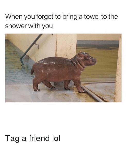 Lol, Memes, and Shower: When you forget to bring a towel to the  shower with you Tag a friend lol