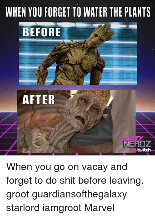 Memes, Shit, and Twitch: WHEN YOU FORGET TO WATER THE PLANTS  BEFORE  AFTER  PART  ON-twitch When you go on vacay and forget to do shit before leaving. groot guardiansofthegalaxy starlord iamgroot Marvel