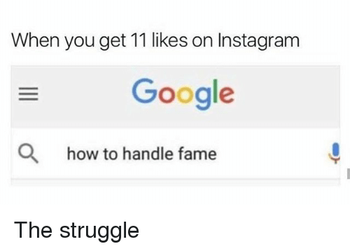 Google, Instagram, and Memes: When you get 11 likes on Instagram  Google  Q  how to handle fame The struggle