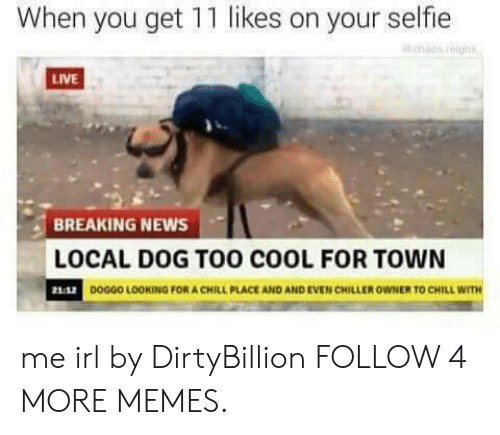 Too Cool: When you get 11 likes on your selfie  LIVE  BREAKING NEWS  LOCAL DOG TOO COOL FOR TOWN  21:42  DOGGO LOOKING FOR A CHILL PLACE AND AND EVEN CHILLER OWNER TO CHILL WITH me irl by DirtyBillion FOLLOW 4 MORE MEMES.