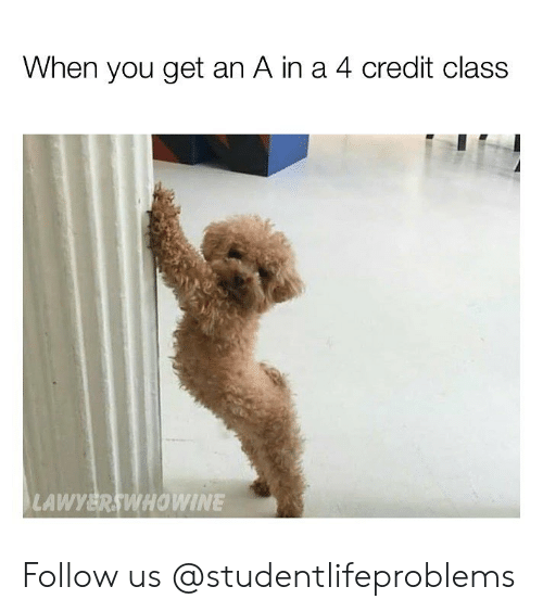 Get An A: When you get an A in a 4 credit class  LAWYERSWHOWINE Follow us @studentlifeproblems