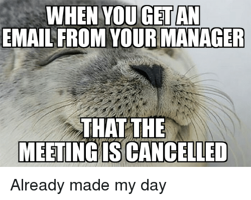 how to send an email cancelling a meeting