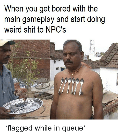 gameplay: When you get bored with the  main gameplay and start doing  weird shit to NPC's *flagged while in queue*