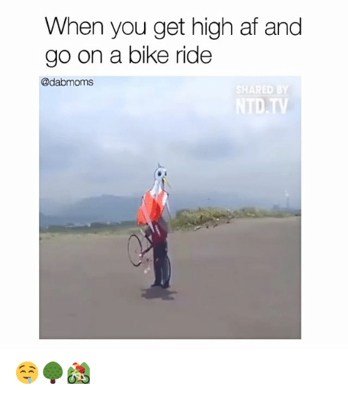 Bike riding: When you get high af and  go on a bike ride  @dabmoms  SHARED BY 🤤🌳🚵‍♀️