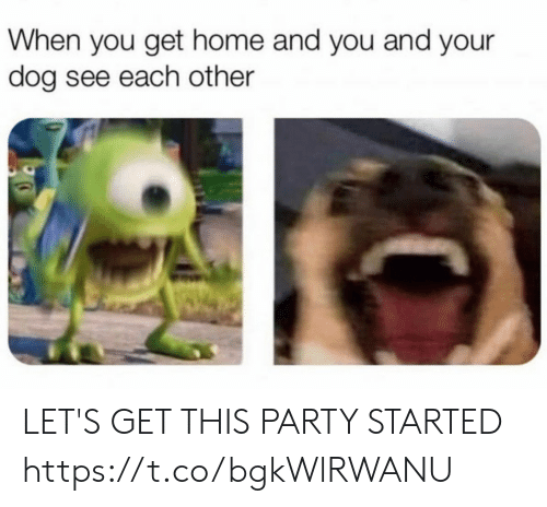 When You Get Home: When you get home and you and your  dog see each other LET'S GET THIS PARTY STARTED https://t.co/bgkWlRWANU
