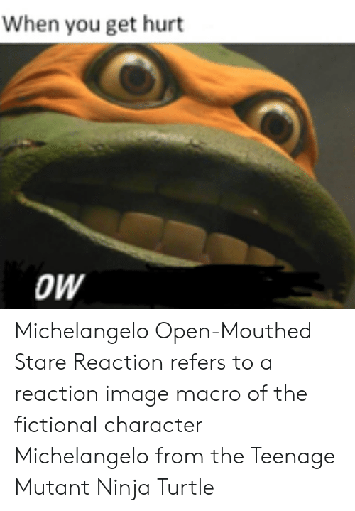 mutant: When you get hurt  OW Michelangelo Open-Mouthed Stare Reaction refers to a reaction image macro of the fictional character Michelangelo from the Teenage Mutant Ninja Turtle