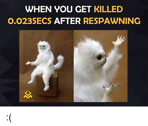 Video Games, Game-Meme, and Game-Memes: WHEN YOU GET  KILLED  0,023SECS  AFTER  RESPAWNING  GAMING MEMES :(