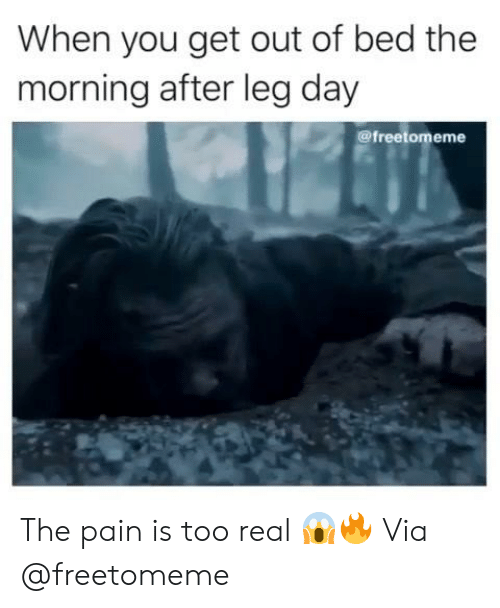 The Morning After: When you get out of bed the  morning after leg day  @freetomeme The pain is too real 😱🔥 Via @freetomeme