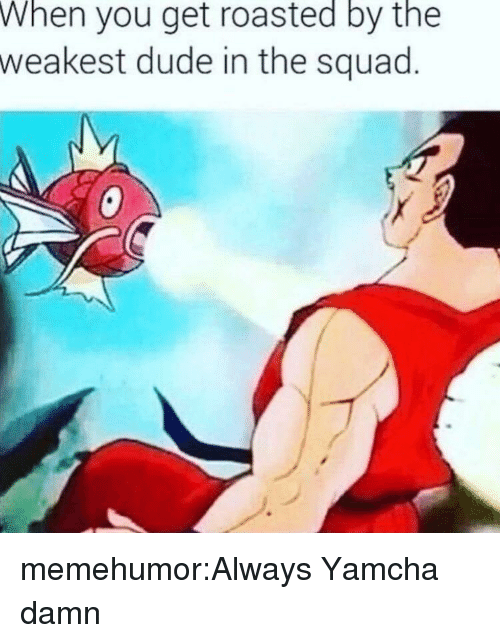 Get Roasted: When  you get roasted by the  weakest dude in the squad memehumor:Always Yamcha damn