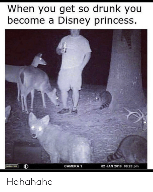 hahahaha: When you get so drunk you  become a Disney princess  02 JAN 2019 09:26 pm  CAMERA 1  MOULTRIE Hahahaha