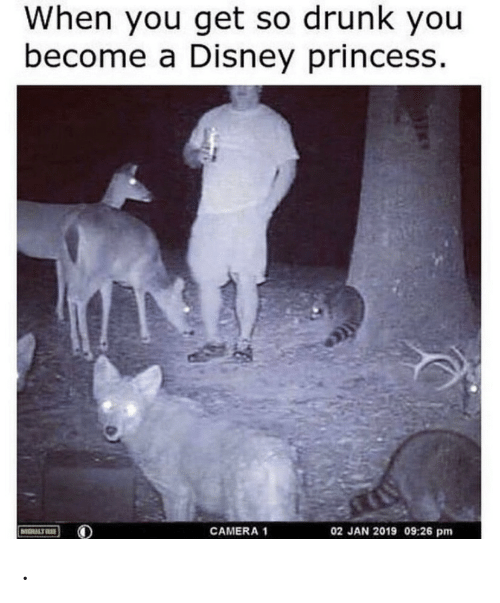 So Drunk: When you get so drunk you  become a Disney princess.  02 JAN 2019 09:26 pm  CAMERA 1  MOULTR .
