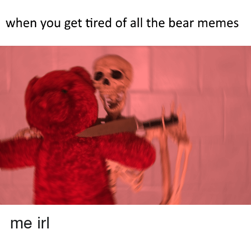 Bears Memes: when you get tired of all the bear memes me irl