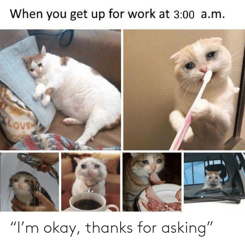 "get up: When you get up for work at 3:00 a.m.  LOVE ""I'm okay, thanks for asking"""