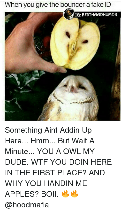 Apple, Memes, and Appl: When you give the bouncer a fake ID  IG: BESTHOODHUMOR Something Aint Addin Up Here... Hmm... But Wait A Minute... YOU A OWL MY DUDE. WTF YOU DOIN HERE IN THE FIRST PLACE? AND WHY YOU HANDIN ME APPLES? BOII. 🔥🔥 @hoodmafia