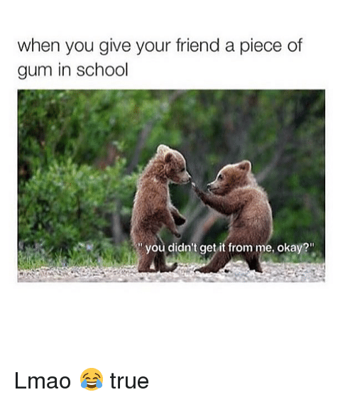 """True: when you give your friend a piece of  gum in school  you didn't get it from me, okay?"""" Lmao 😂 true"""