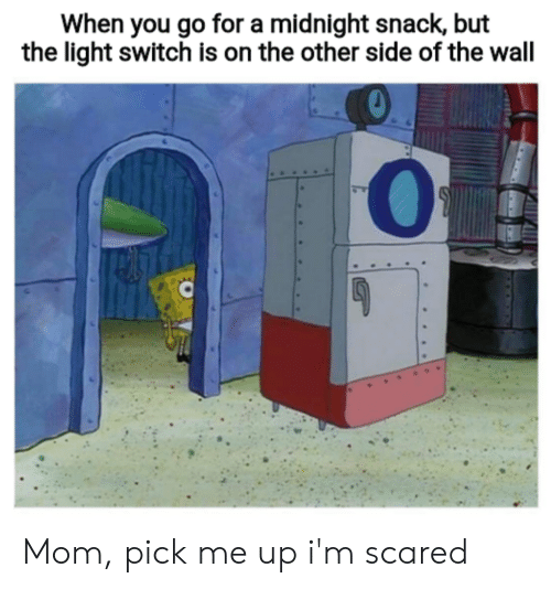 Other Side Of The Wall: When you go for a midnight snack, but  the light switch is on the other side of the wall Mom, pick me up i'm scared
