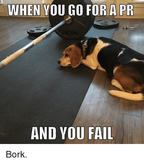 SIZZLE: WHEN YOU GO FOR A PR  AND YOU FAIL Bork.