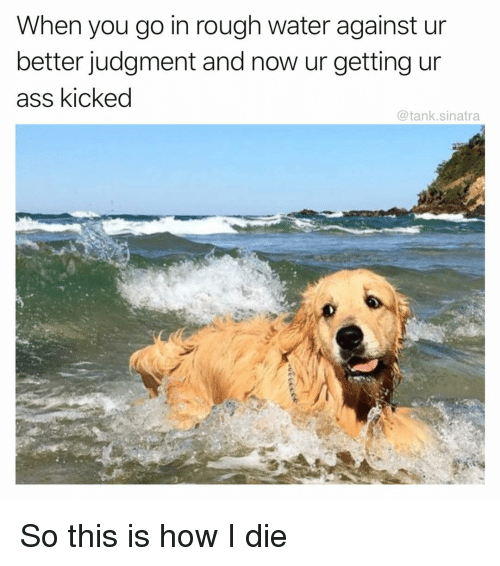 Ass, Funny, and Water: When you go in rough water against un  better judgment and now ur getting un  ass kicked  @tank.sinatra So this is how I die